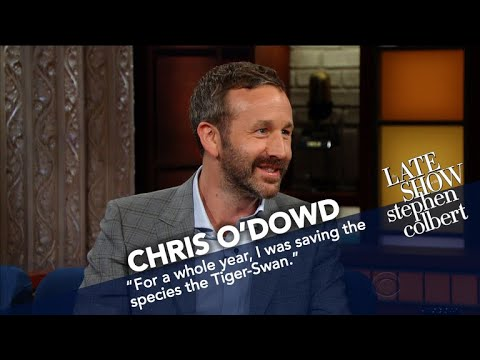 Chris O'Dowd Raised Money For Fake Endangered Species