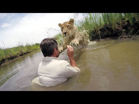GoPro VR BTS: For the Love of Lions
