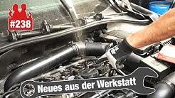 Droht die Horror-TSI-Diagnose?? 😧 Einspritzventil im VW Golf 6 sprudelt wie verrückt!