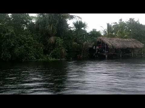 Morichal Largo River - Orinoco Delta - Venezuela - August 2010 (Part I)