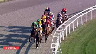 Vidéo de la course PMU PRIX DE L'ESTEREL
