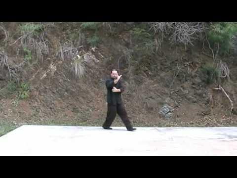 best qigong instructional videos