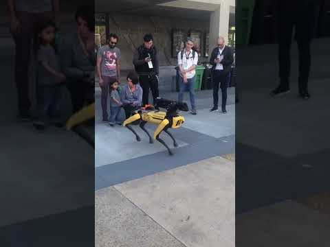 Boston Dynamics – TechCrunch Sessions: Robotics + AI(2)