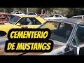Yonque Solo Mustang En Aguascalientes Mexico