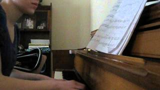 Piano Cover & RPP- Heartsounds by David Lanz.AVI
