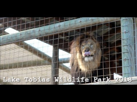 Lake Tobias Wildlife Park - Safari & Animals -August 2018