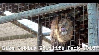 Lake Tobias Wildlife Park - Safari & Animals -August 2018