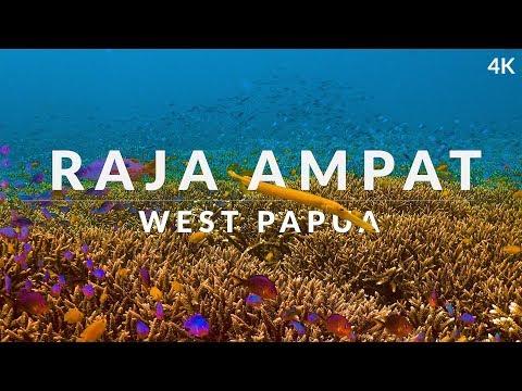 This Is Raja Ampat (4k) - Dive Into The Dream Of Biodiversity