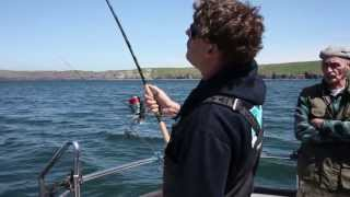 Catching Smoothounds Video - Daiwa Exceler Spinning Rod Test