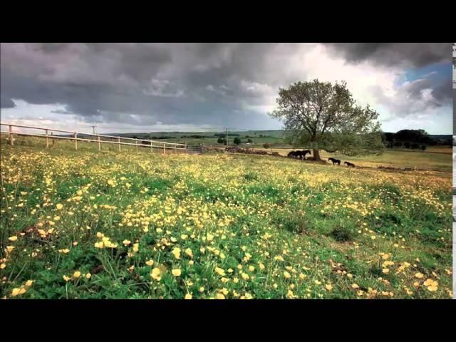 ralph-vaughan-williams-the-lark-ascending-classical-music11