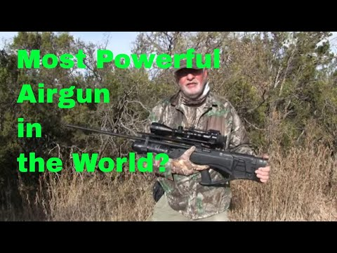 Hunting The Most Powerful Production Airgun? (Hatsan Piledriver .457)