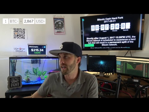 Bitcoin Cash August 1st  (Live)