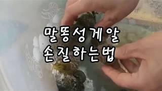 2019 03 23 성게알 손질하는법