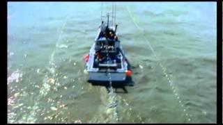 Способы лова лосося, Аляска(Тролловый лов Лов жаберными сетями Аляска стала первой применять стандарт рационального, экологичного..., 2012-04-12T10:54:49.000Z)