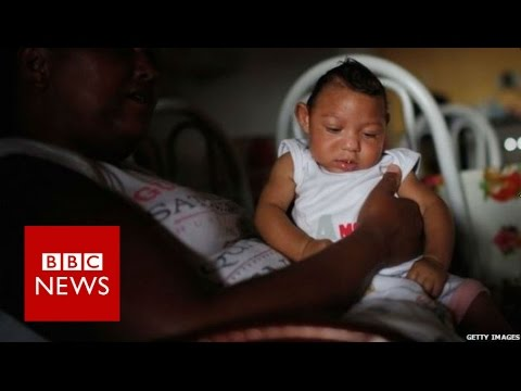 Why is Zika a public health emergency? BBC News