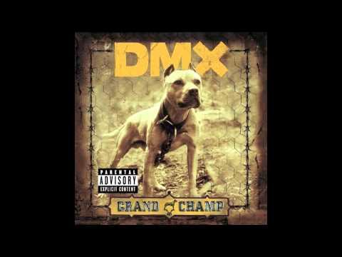 DMX - Fuck Y'all (Loop Instrumental w/ Hook) mp3