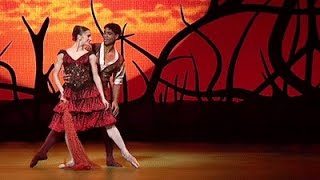 Don Quixote - Act II pas de deux (The Royal Ballet)