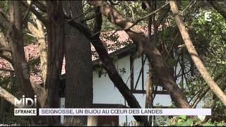 SUIVEZ LE GUIDE : Seignosse, un bijou au coeur des Landes
