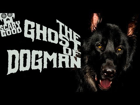 The Ghost of Dogman! 11 Stories: 1 Hour! Mp3