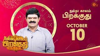 இன்றைய ராசி பலன் | நல்ல காலம் பிறக்குது | 10 October 2020 | Sun Tv
