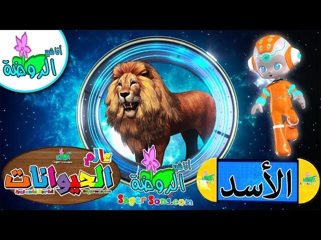 اناشيد الروضة - تعليم الاطفال - عالم الحيوانات (1)- الاسد Learn land and sea animals For Kids -Lion