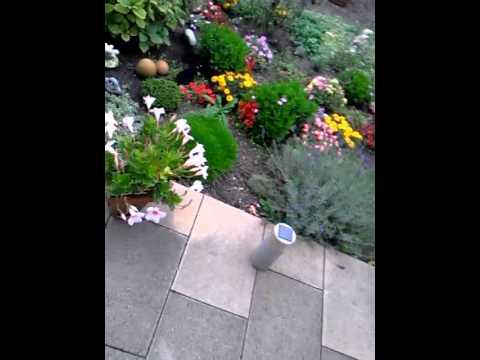 Schön Schön Rosa Aquarium Schwimmender Mini Garten Filter