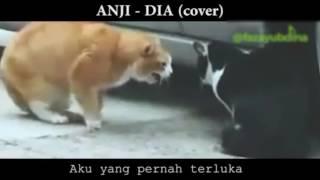 Anji - Dia (Cover)