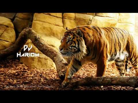 Tiger Sandal Dhumal - DJ HARIOM Audio Juke Box
