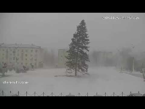 В Черемхово,упала елка((((