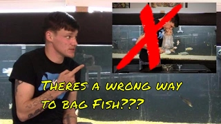 How to Bag Fish for Transporting | So Many Do it Wrong!