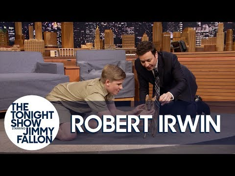 Robert Irwin and Jimmy Play with an Adorable Baby Deer