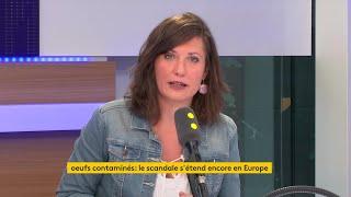 """Œufs contaminés : le ministre de l'Agriculture """"minimise la situation"""", affirme Julien Bayou"""