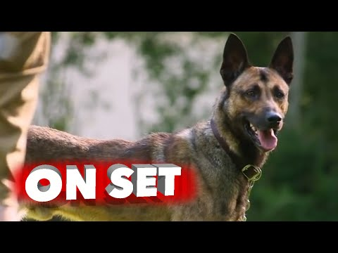 Max: Behind the Scenes Making of Dog Movie - Lauren Graham, Thomas Haden Church