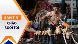 Mặc dư luận, dân Trung Quốc vẫn ăn thịt chó | VTC1