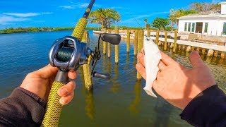 Fishing Big Baits For Giant Fish In Heavy Cover || My Favorite Fish To Target