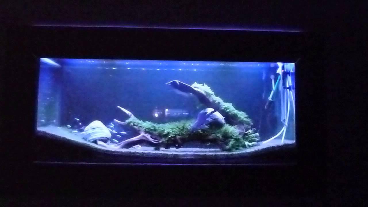 Panel Led 12x Cree 10x Epiled 20000k Akwarium Morskie ściemniacz Nocne Oświetlenie