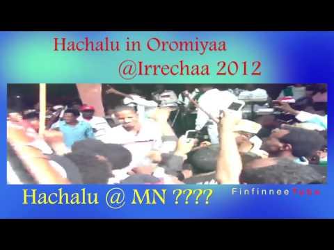 Oromiyaa Tiyya Music Show @ MN