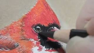 Painting a Day Demonstration - Cardinal Bird by Roberta Roby Baer PSA