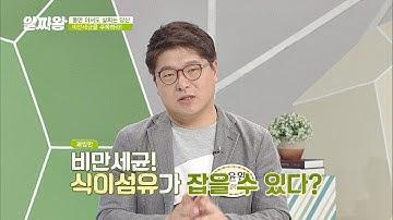 비만의 주범! ′뚱보균′, 식이섬유′가 잡을 수 있다!  TV정보쇼 알짜왕(alzzaking) 119회