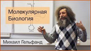 видео: [Коллоквиум]: Все, что вы хотели знать про молекулярную биологию, но не удосужились спросить