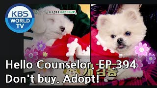 We hope people care for abandoned animals!  [Hello Counselor/ENG,THA/2019.01.07]