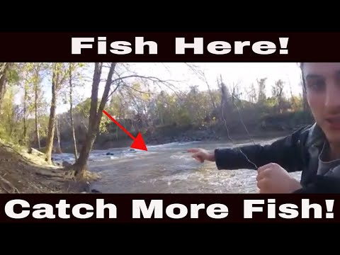 How To Read A River & Find Fish: Learn How To Read Water In Rivers & Creeks