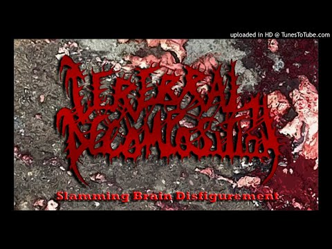 Cerebral Decomposition - Slamming Brain Disfigurement mp3