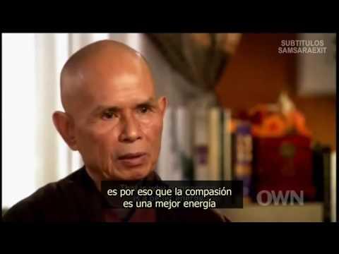Resultado de imagem para Thich Nhat Hanh entrevistado por Oprah Winfrey - Escuta Compassiva - LEGENDADO
