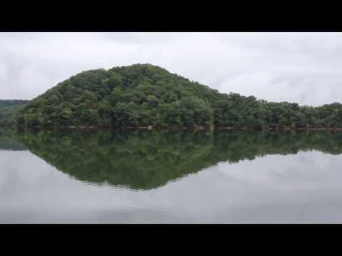 Watauga Lake near Mallard Cove in Little Milligan