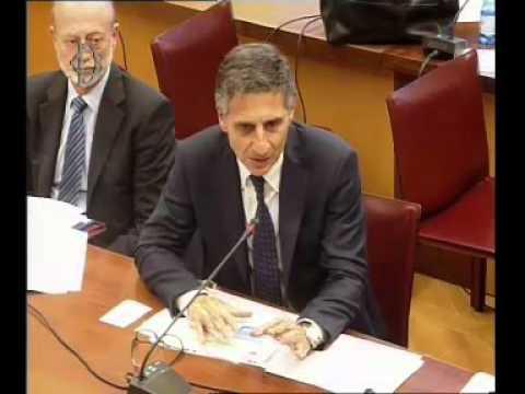 Camera dei deputati audizione ipzs in commissione for Tv camera deputati
