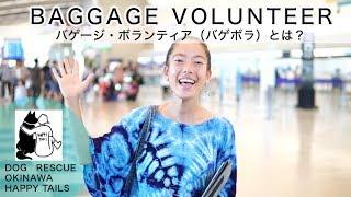 バゲージボランティア BAGGAGE VOLUNTEER