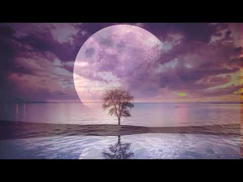 Relaxing Music For Stress Relief - Sleep Music - Music For Meditation, Spa And Therapy.