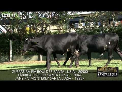 SANTA LUZIA   LOTE 77