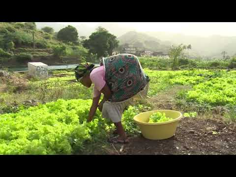 Cabo Verde  Picos and Engenhos Watershed Management Project on Santiago Island